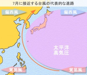 taifu_July